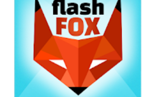 FlashFox Flash browser for pc 2